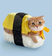 General Meow's Chicken
