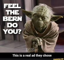 feel the bern you do