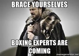 boxing expert